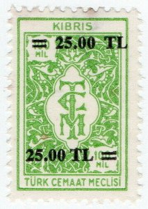 (I.B) Cyprus (Turkish Zone) Revenue : Duty Stamp 25TL on 100m OP