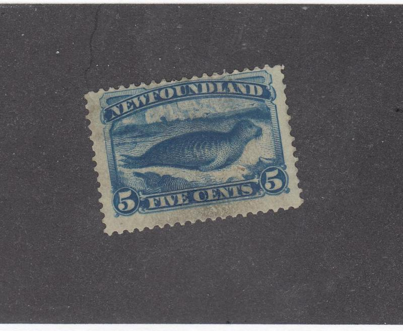 NEWFOUNDLAND LOT # 53 FVF-MNG 5cts HARP SEAL CAT VALUE $200