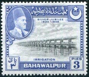 Bahawalpur Sc#22 Used