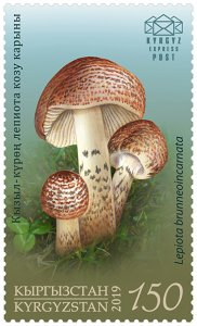 Stamps of Kyrgyzstan 2019. - Stamp.  Stamp.  124M. Deadly Dapperling.
