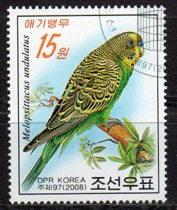 4723 - CTO-NH - Green Parakeet - Bird (1)