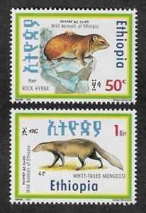 1351-1352,MNH