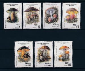 [50165] Madagascar Malagasy 1990 Mushrooms Pilze Champignons MNH
