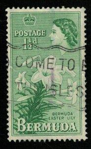 Bermuda, 1953 Queen Elizabeth II, 11/2d (TS-312)