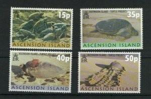 BC100) Ascension Island 2000 Turtle Project MUH