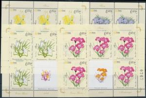 Montenegro stamp Flowers minisheet set MNH 2008 Mi 160-165 WS176192