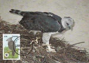 WWF070)  WWF Panda, Maxicards, Guyana, Eagle, set of 4