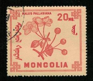 Flower, Mongolia, 20M (T-8271)