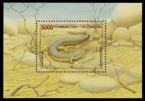 Tajikistan 1995 Scott #75 Mint Never Hinged