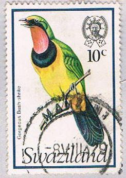 Swaziland 251 Used Bush Shrike 1976 (BP2603)