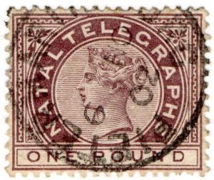 (I.B) Natal Telegraphs : £1 Brown (Pietermaritzburg)