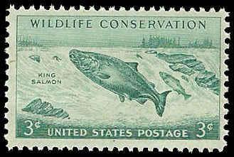 PCBstamps   US #1079 3c Wildlife, King Salmon, MNH, (PCB-10)