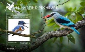 Z08 IMPERF GU190225b GUINEA (Guinee) 2019 Kingfishers MNH ** Postfrisch