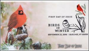 18-262, 2018, Birds in Winter, Pictorial Postmark, Cardinal, FDC