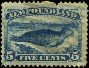Newfoundland Scott #55 Used