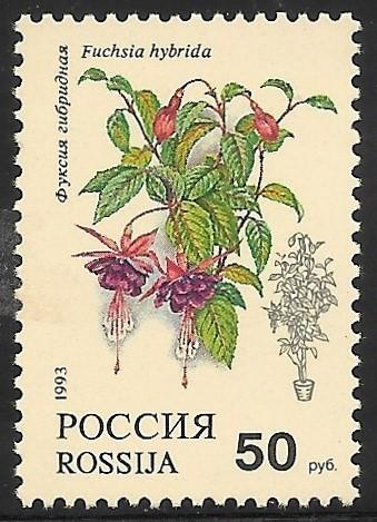 Russia Mint Never Hinged (5325)