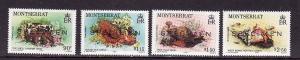 D1-Montserrat-Scott#543-6-Unused NH-Marine Life-1984-Specime