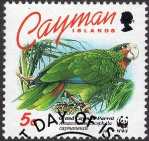 Cayman Islands 668 - Used - 5c Grand Cayman Parrot (WWF) (1993) (cv $1.25)
