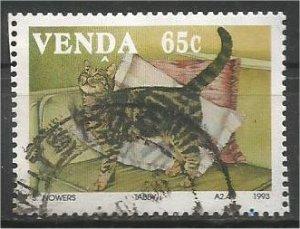 VENDA, 1993, used 65c, Cats Scott 254