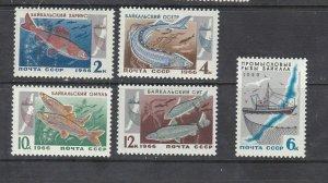 RUSSIA - 1966 FISH OF LAKE BAIKAL - SCOTT 3240 TO 3244 - MNH