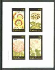 Staffa 1982 Flowers #25 (Pelarconiums, Auricula, Camellia...