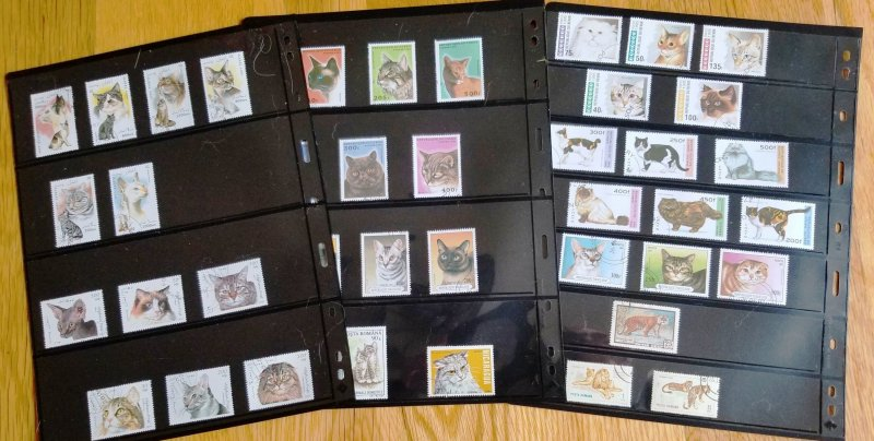Topical cat collection, 100 plus issues