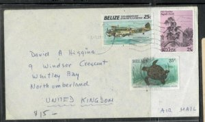 BELIZE COVER (P2406B) 1991 25C TURTLE+25C AIRPLANE+25C A/M COVER TO ENGLAND