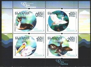 Bulgaria. 2019. bl467. Birds, fauna. MNH.