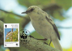 Pitcairn Islands 1996 Maxicard Sc #457 5c Henderson Island Reed-warbler WWF