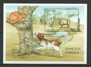 AA1998 UGANDA FAUNA DOMESTIC ANIMALS CATS & DOGS OXES BL FIX