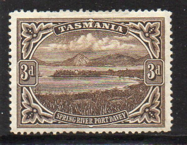 Tasmania Sc 90 1899 3 d view of Spring River stamp mint