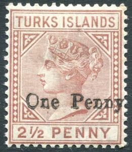 TURKS ISLANDS-1889 1d on 2½d Red-Brown Sg 61 LIGHTLY MOUNTED MINT V23448