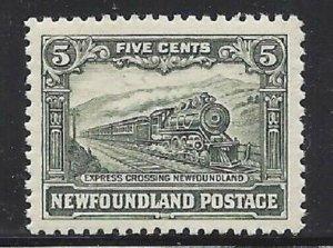 Newfoundland #167 Excellent Stamp!! Jumbo!!