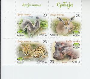2017 Serbia Belgrade Zoo Baby Animals B4  (Scott 798) mnh