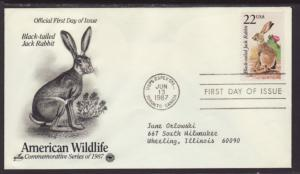 US Jack Rabbit 1987 PCS Typed FDC BIN
