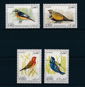 [31012] Algeria 1976 Birds Vögel Oiseaux Ucelli   MNH