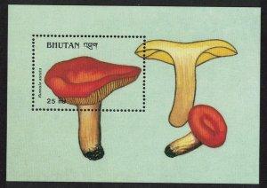 Bhutan Golden russula 'Russula aurata' Fungi Mushrooms MS D1 SG#MS797 MI#Block