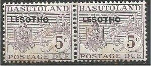 LESOTHO, 1966, MNH 5c pair, Overprinted Scott J2 rust