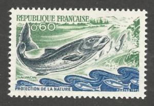 France  1338