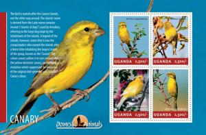 Uganda 2014  Domestic Animals - Canary  Birds 4  Stamp  Sheet 21D-137