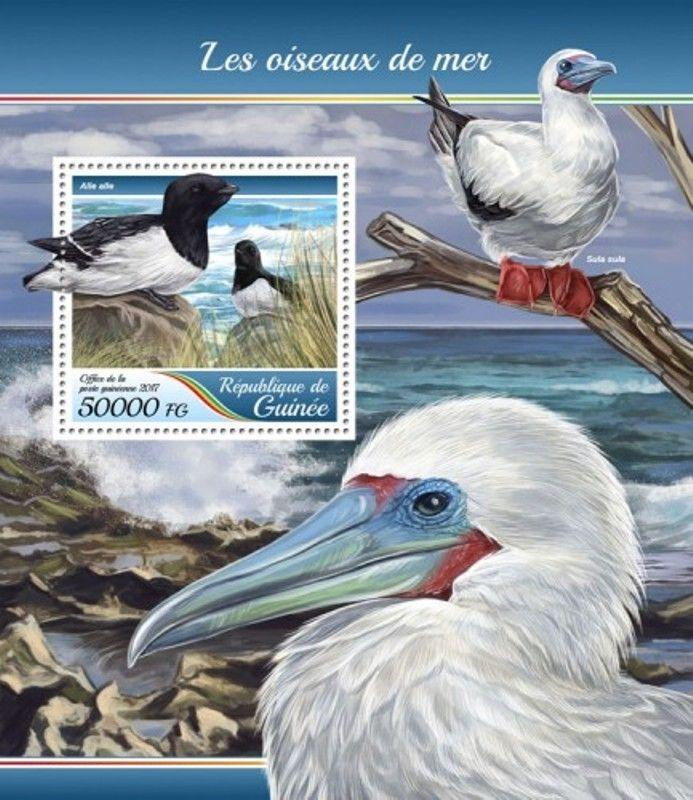 Guinea - 2017 Sea Birds - Stamp Souvenir Sheet - GU17416b