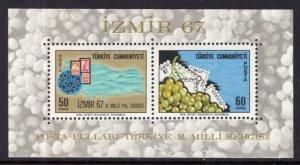 Turkey 1754a Souvenir Sheet MNH VF