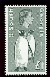 Falkland Is Dependencies 1963 QEII £1 grey-black superb MNH. SG 16. Sc 16.