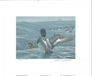 NEW YORK #5 1989 STATE DUCK STAMP PRINT GREATER SCAUP EXECUTIVE ED