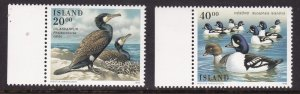Iceland, Fauna, Birds MNH / 1996