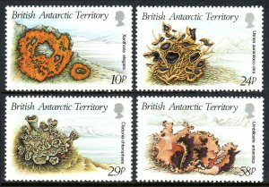 British Antarctic Territory 149-152, MNH. Lichens, 1989