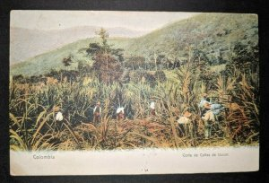 1912 Grey Haircut Tzucar Columbia Beaucaire France Real Picture Postcard Cover