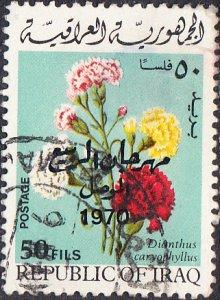 Iraq  #543 Used