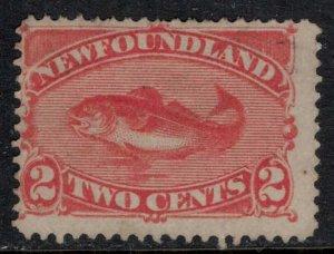 Newfoundland #48  CV $9.50+   Could be mint no gum