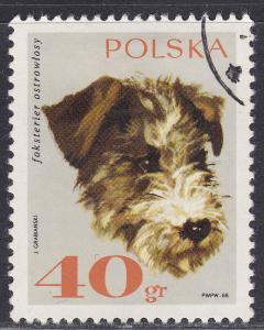 Poland 1637 USED 1969 Rough-Haired Fox Terrier Dog 40GR
